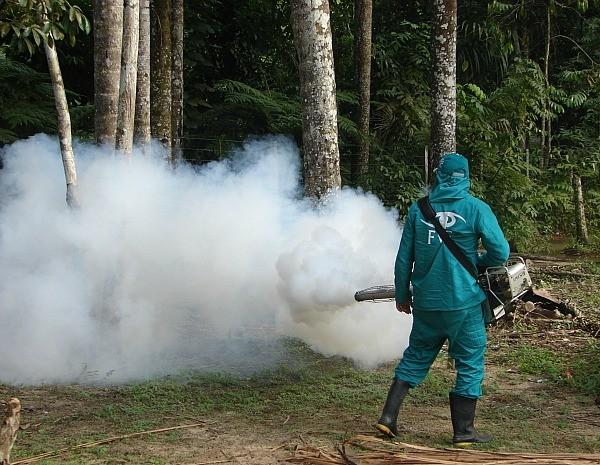combate_dengue_-_foto_carlos_lima_fvs-2