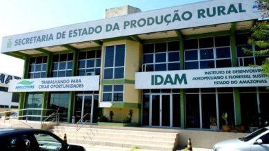Photo of Inscrições para concurso do Idam com salários de até R$ 6,5 mil acabam nesta quarta (30)
