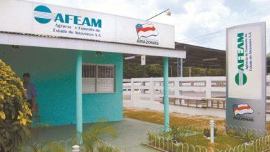 Foto de Afeam oferece crédito de até R$ 30 mil a microempreendedores do Amazonas