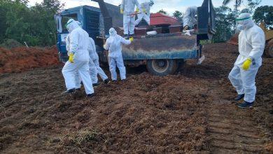 Foto de Tabatinga faz enterro coletivo em meio à pandemia de coronavírus